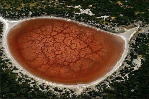 Aerial Photography - cracked pond of rust