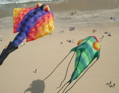 Aerial Photography - Kite Invasion