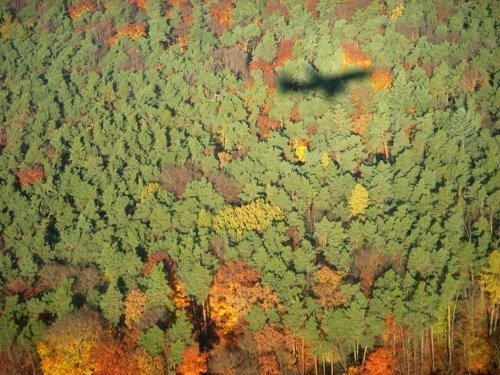 Aerial Photography - flying in autumn (1)