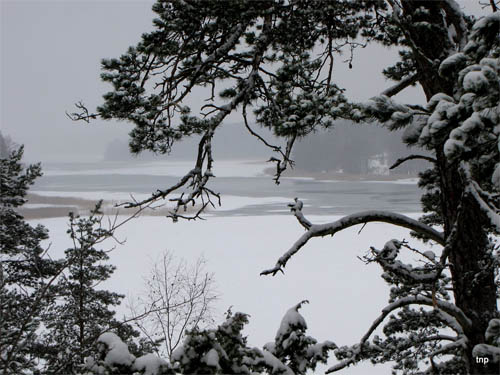 Wallpaper-winter-landscape-finland in Beautiful Christmas and Winter Wallpapers For Your Desktop