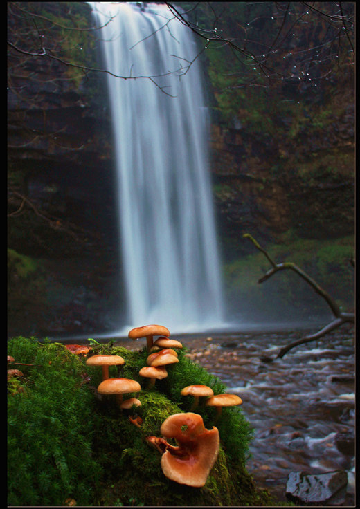 The Beauty Of Nature: THE BEAUTIFUL PHOTOS OF WATERFALLS