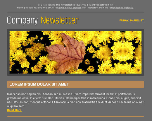 Free Html Newsletter Templates - Noupe