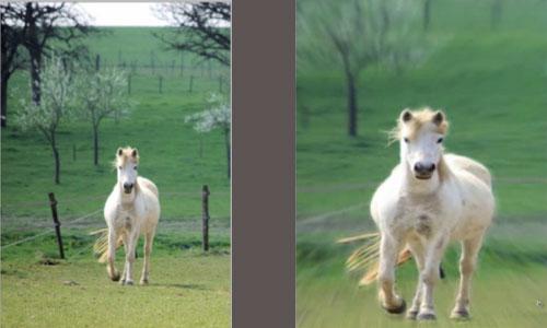 Radial Blur Using Photoshop