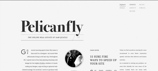 Pelican Fly blog design