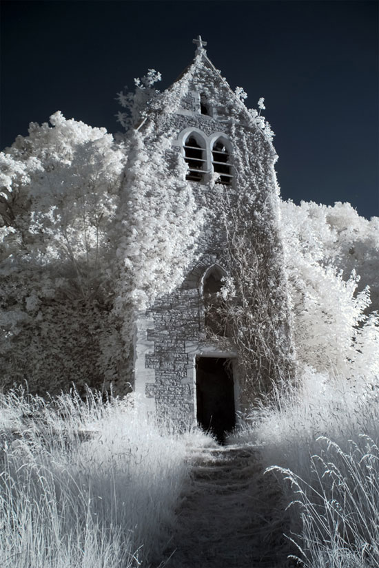 A Showcase of Infrared Photography