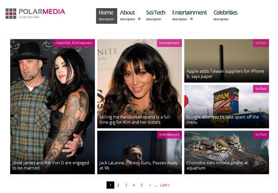 Polar Media WordPress Theme