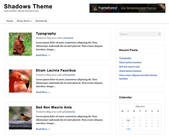 Shadows WordPress Theme