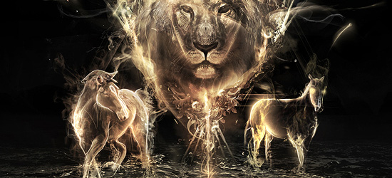 our kingdom nature photo manipulation