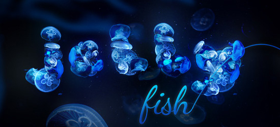 jellyfish typography nature photo manipulation