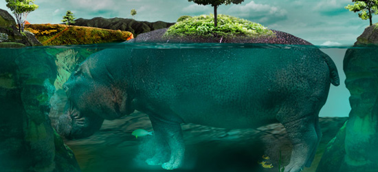 Isla nature photo manipulation