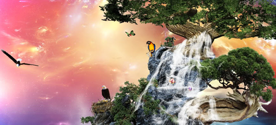 nature nature photo manipulation