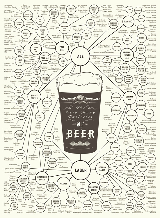 beer typography infographics