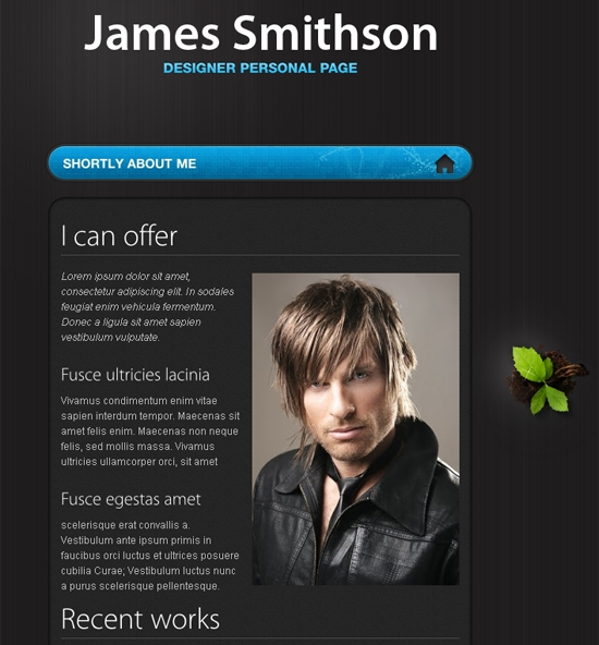James Joomla Template