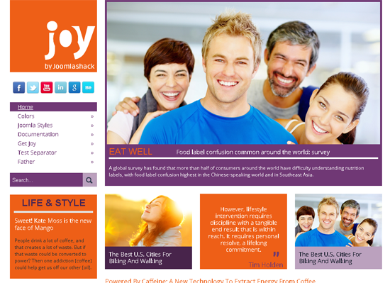 Joy Joomla Template