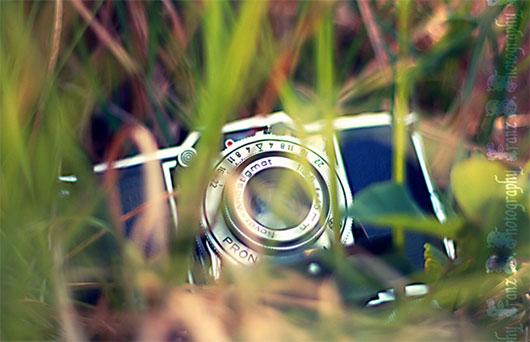 camera in grass