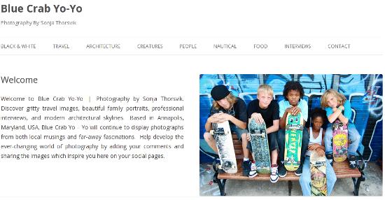 Homepage of Twenty Twelve
