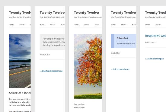 Multiple Post Formats in Twenty Twelve