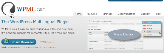 WordPress Multilingual Plugin