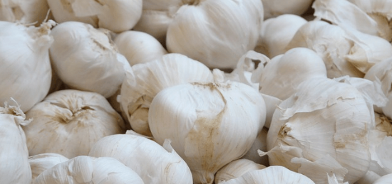 Garlic.Js and Sisyphus.Js: These jQuery Plugins Store Form Values With HTML5 LocalStorage