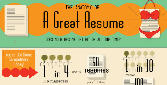 Facts, Facts, Facts: The Anatomy of a Successful Resume (Infographic)