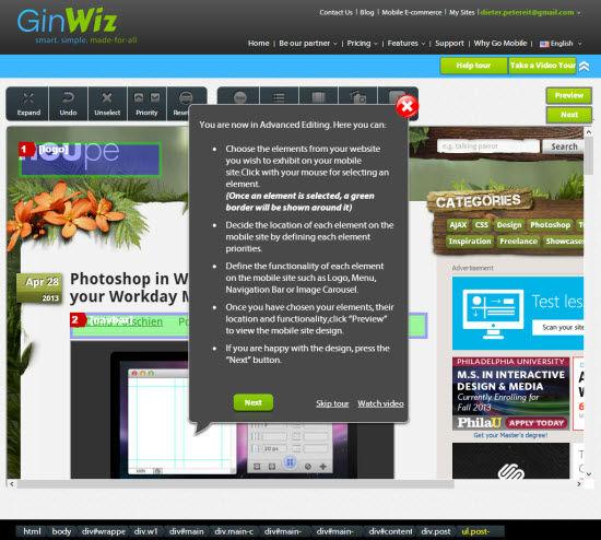 GinWiz   Advanced Editor