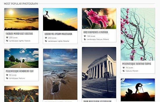 20 款WordPress Themes