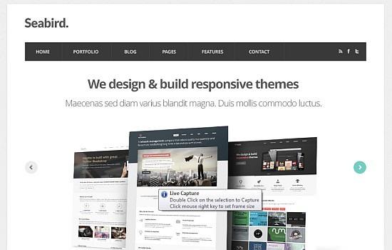 Seabird Free Homepage PSD