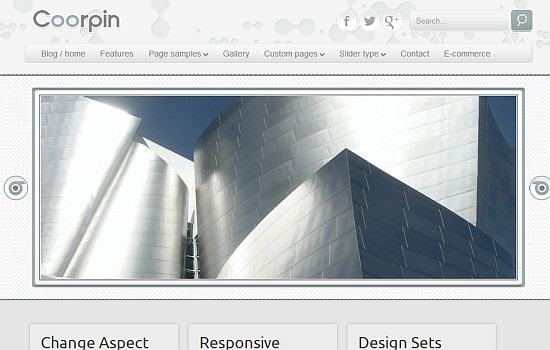 Coorpin business theme