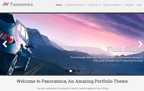 Amazing portfolio WP theme