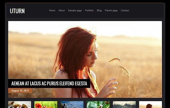 Highly sophisticated wordpress theme3 2013 Yazının En İyi Ücretsiz Wordpress Temaları