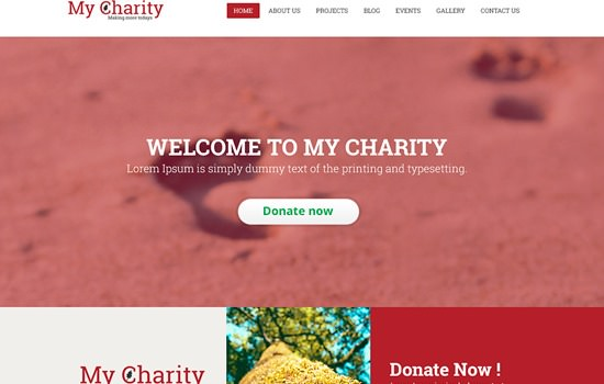 My Charity PSD template