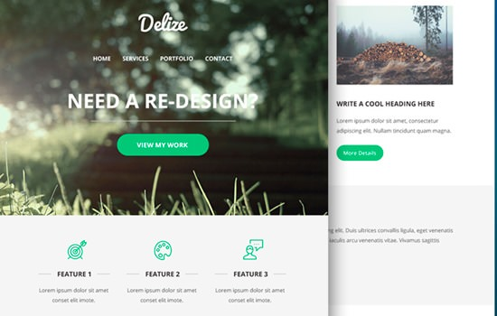 Delize PSD template