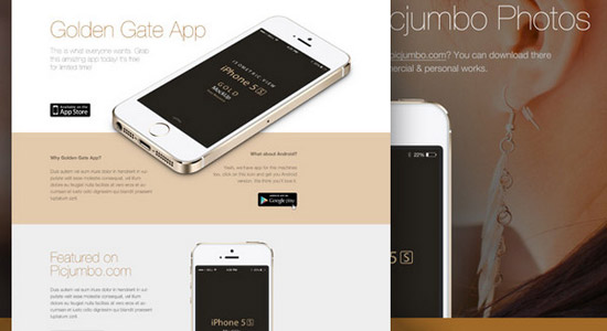 Golden-Gate-Sleek-Website-Design