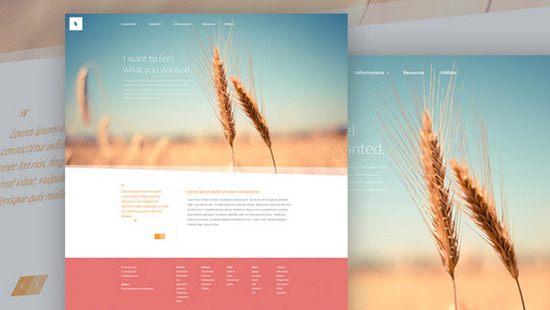 Organic---Free-Website-PSD-Template