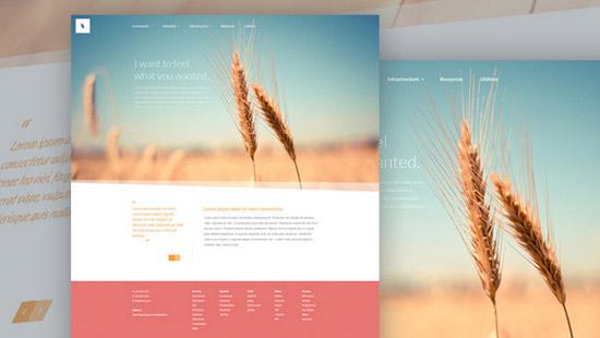 Organic---Free-Website-PSD-Template