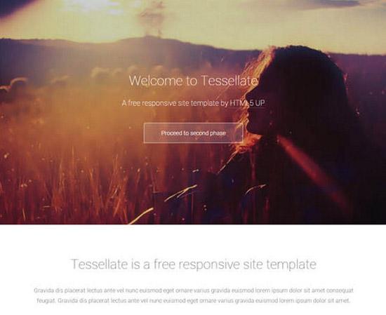 Tessellate-_-Premium-Responsive-Site-Template