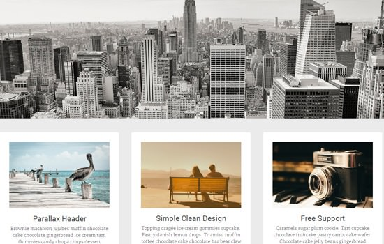 Radiate WP theme
