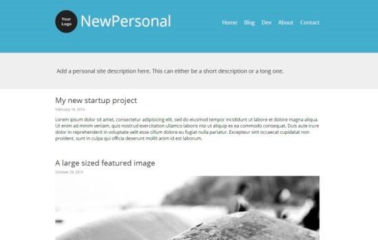 Newpersonal WP theme
