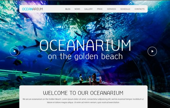 Oceanarium PSD template