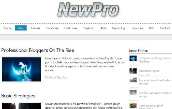 Newpro WP theme