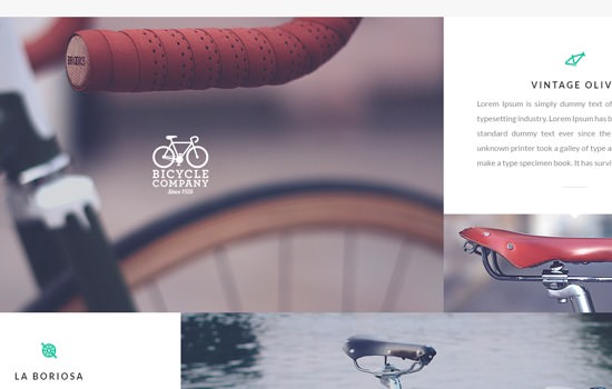 Bicycle PSD template