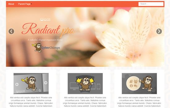 Radiant WP theme