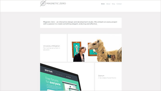 Magnetic Zoo Website