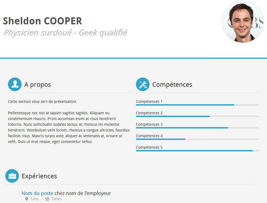 Example Of Resume Html sheldon