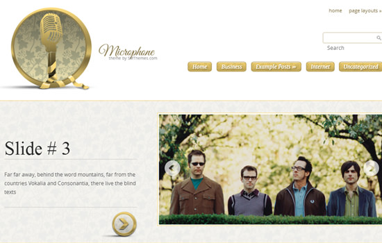 Microphone WP theme