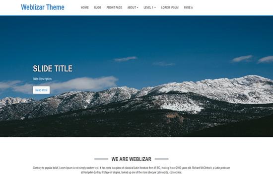 weblizar WP theme