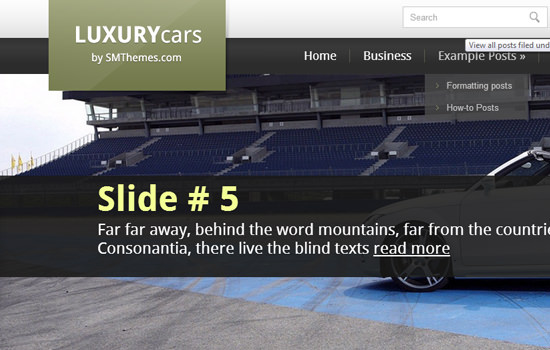 LuxuryCars WP theme