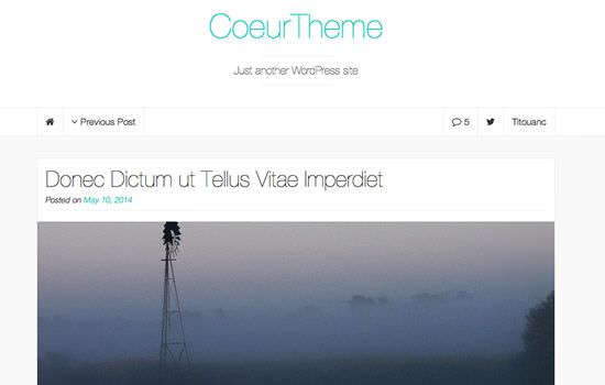 Coeur WP theme