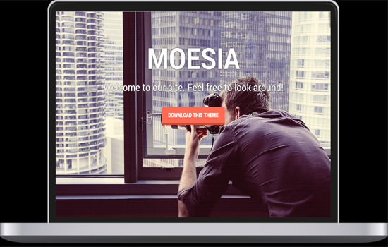 Moesia WP theme