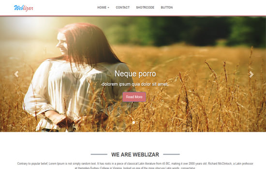 Weblizar-brown WP theme